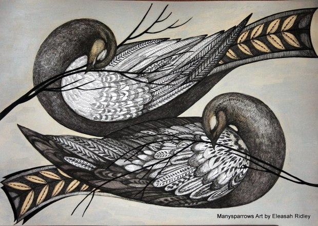 long letter birds (1)