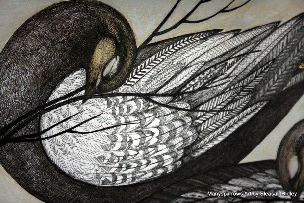 long letter birds (2)
