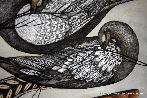 long letter birds (3)