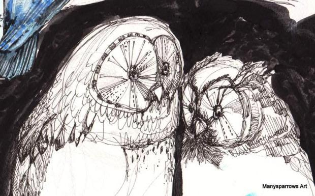 manysparrows art owls (13)
