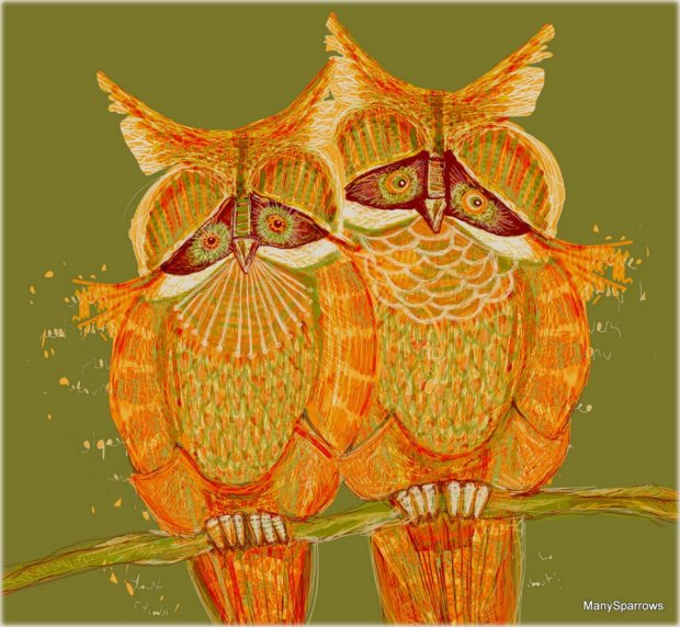 manysparrows art owls (15)
