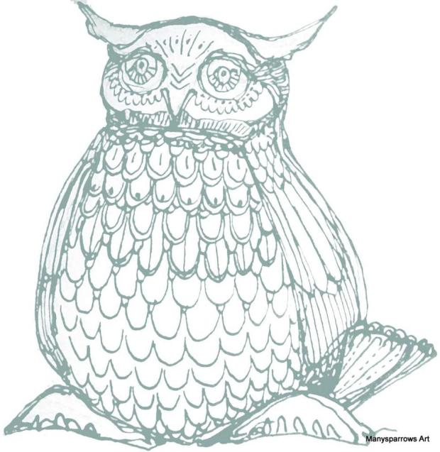 manysparrows art owls (16)