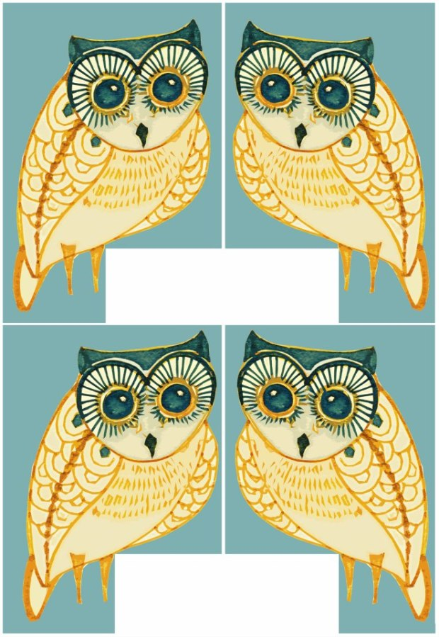 manysparrows art owls (28)